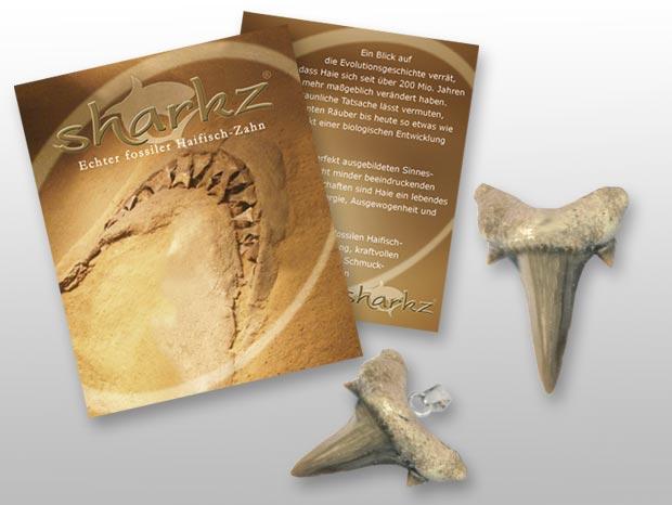 Sharkz – Haifischzähne